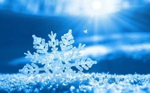 8903668-snowflake
